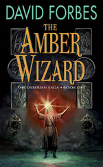 Amber_wizard